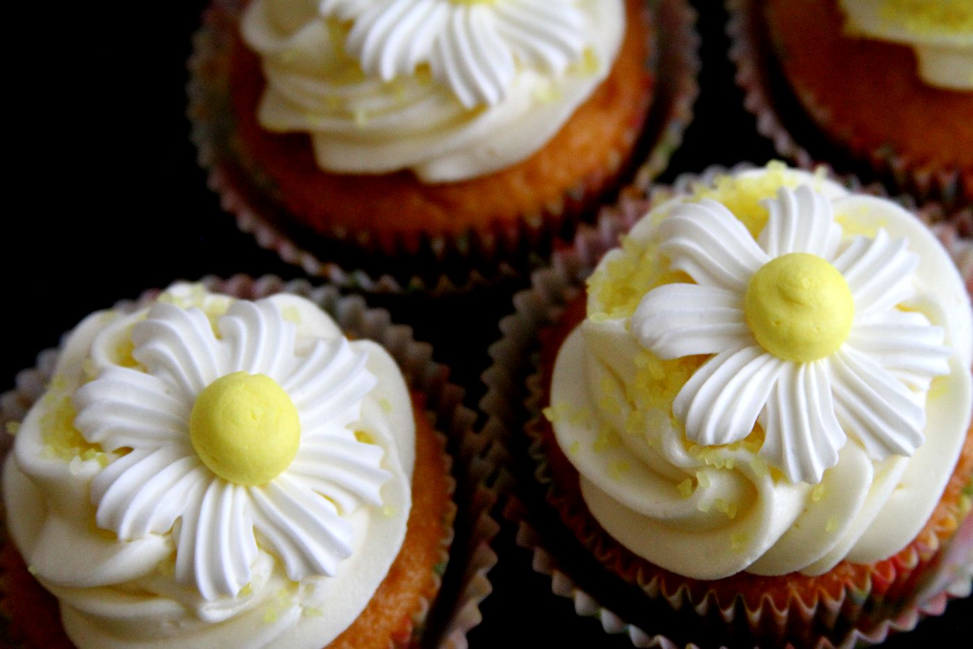 ... Inside Meyer Lemon Cupcakes – A Cup of Sugar … A Pinch of Salt