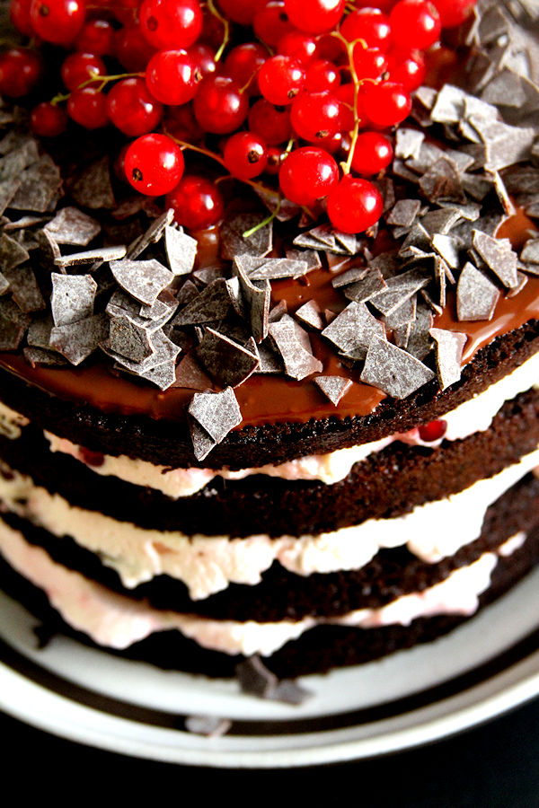 ChocolateRedCurrantMousseTorte-medium6
