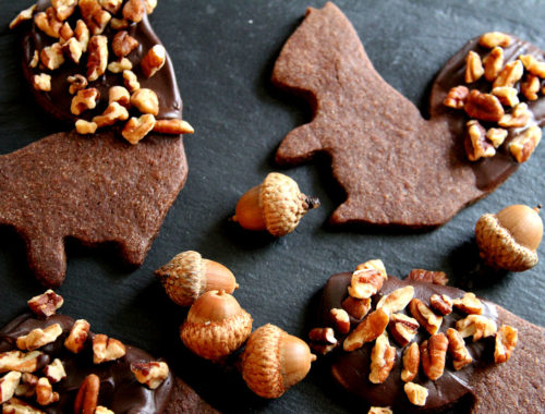 DoubleChocolateSquirrels-medium1